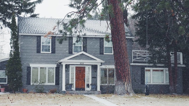 House with trees in front yard and snowing