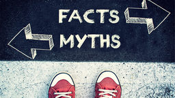 Person standing below a myths vs. facts sign